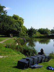 Charlton's Pond